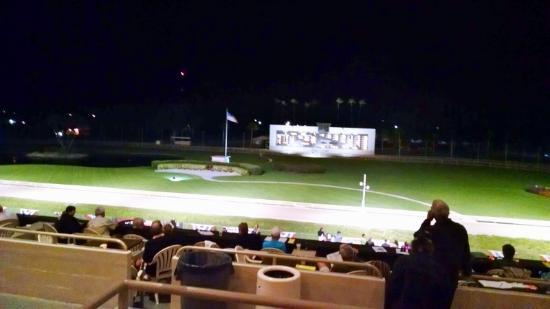 greyhound race picture of derby lane st petersburg tripadvisor rh tripadvisor com