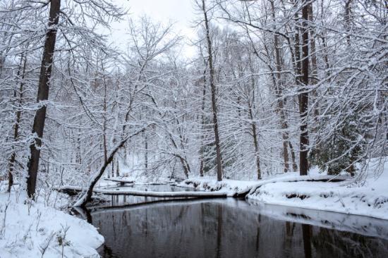 Winter Virginia Outdoors