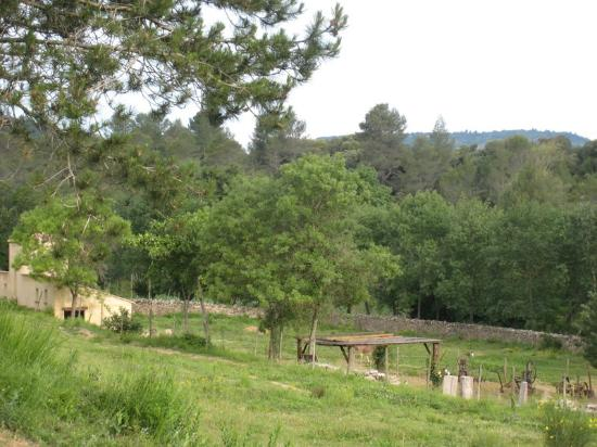 Saint-Pierre-des-Champs, ฝรั่งเศส: Nature autour du Moulin