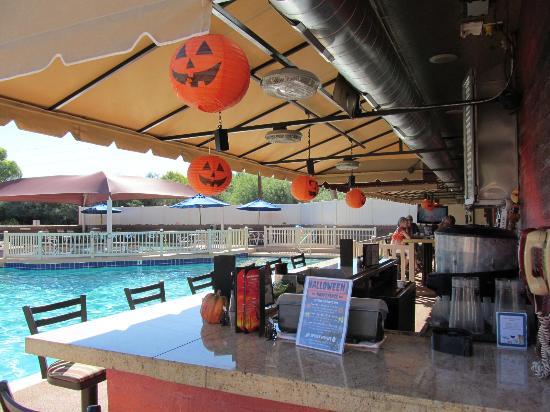 halloween at scr picture of scottsdale camelback resort rh tripadvisor com