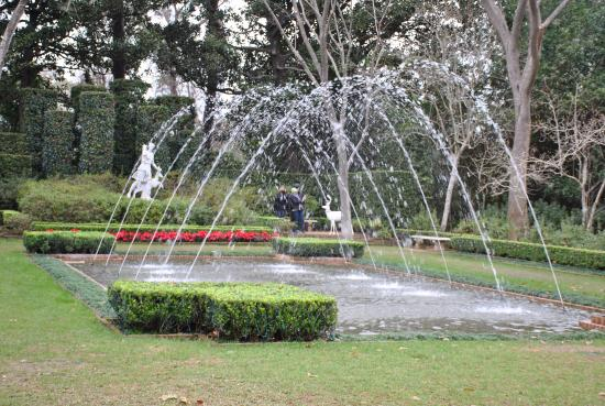 the garden - Picture of Bayou Bend Collection and Gardens, Houston ...