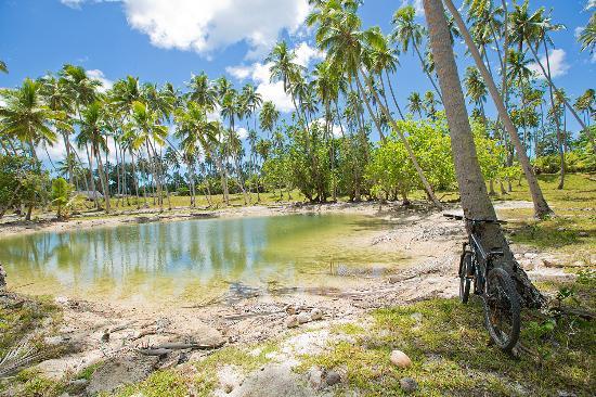 Entrance - Picture of Ratua Island Resort & Spa, Espiritu Santo - Tripadvisor