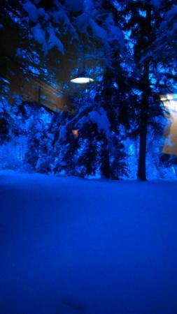 North Pole Cabins: IMAG0597_large.jpg