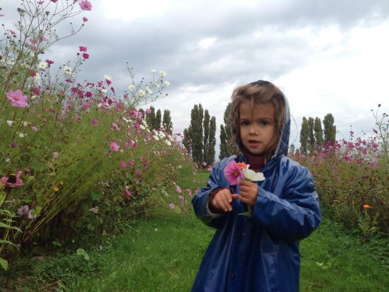 Corgoloin, Frankreich: Jardin