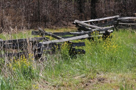 Garfield, AR: Split Rail Fence