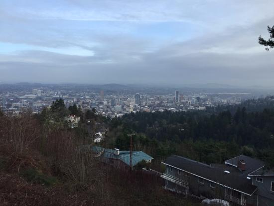 Pittock Mansion: Scenic View