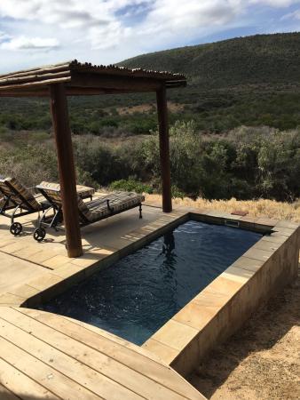 Kwandwe Private Game Reserve, แอฟริกาใต้: photo7.jpg