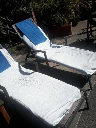 Costa Real Suites Resmi