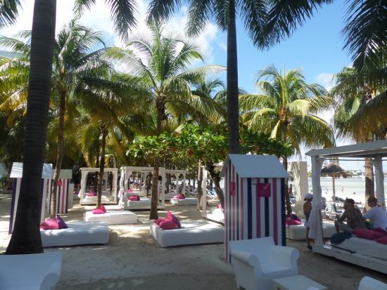 Zdjęcie Grand Oasis Palm