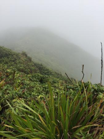 Nevis Peak Hike: photo1.jpg
