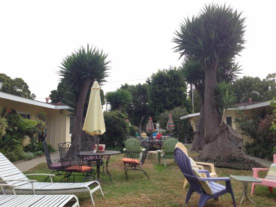 Beach House Inn: jardim interno