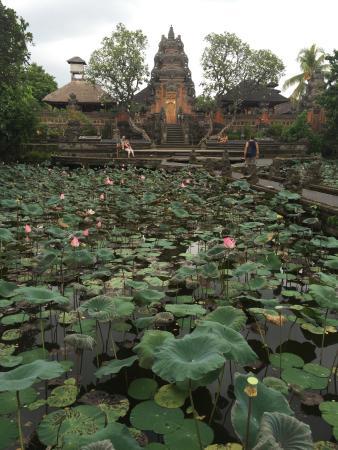 saraswati temple picture of saraswati temple ubud tripadvisor rh tripadvisor com