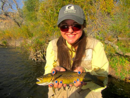 Buena Vista, โคโลราโด: Autumn brown trout on Arkansas