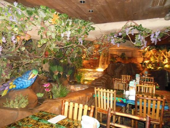 Rainforest Cafe Hours San Antonio