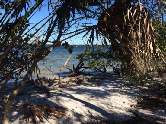 Bradenton, FL: photo2.jpg