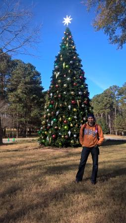 Greensboro, GA: great christmas decor
