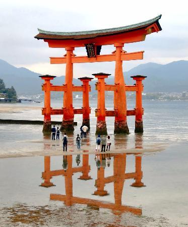 IMG_20160110_103108_large.jpg - Picture of Itsukushima Shrine, Hatsukaichi - ...