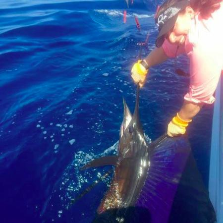 Down East Guide Service: First Sailfish!