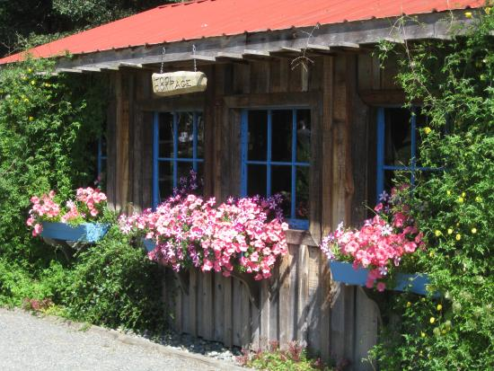 Comox, Канада: This is the cutest little cottage building
