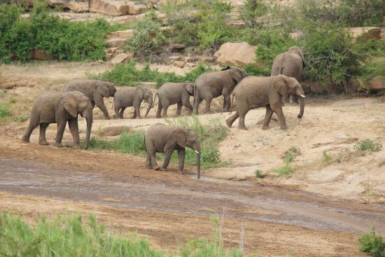 Foto de Zululand
