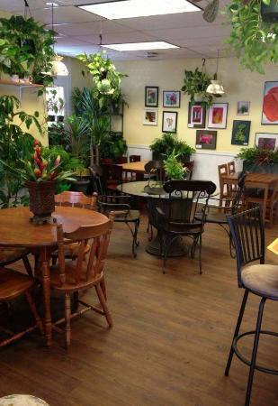 Plant Paradise Cafe