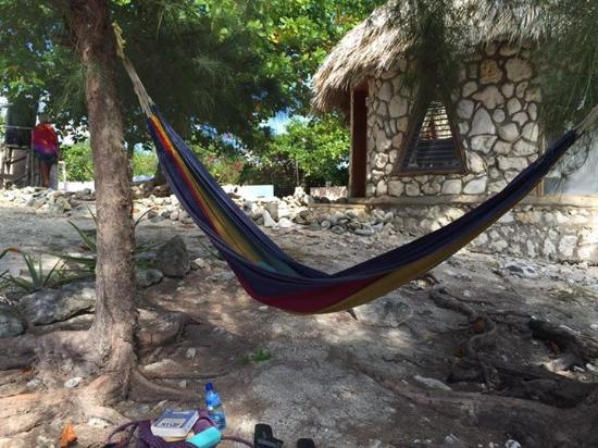 Jackie's on the Reef: My favorite hammock