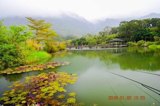 Luoshan Fish Pond