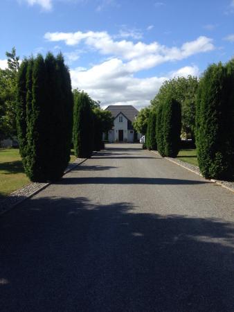 Ρένγουικ, Νέα Ζηλανδία: photo0.jpg