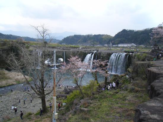 Bungoono, Japan: 原尻の滝 桜と滝