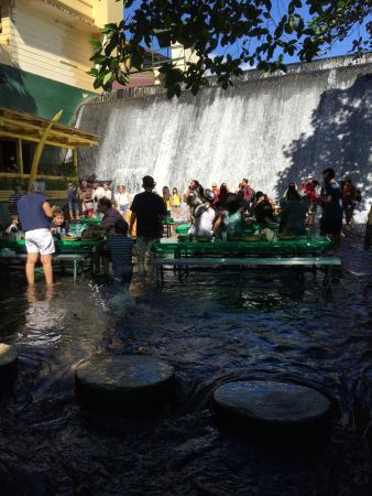 Picture Of Villa Escudero Tiaong Tripadvisor
