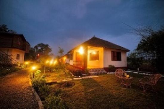 Rhea Safari Lodge