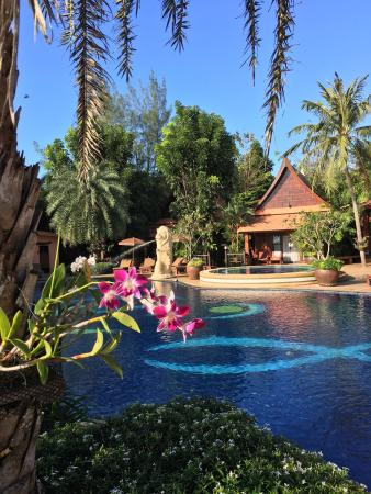 photo0 jpg picture of baan grood arcadia resort spa bang saphan rh tripadvisor ie