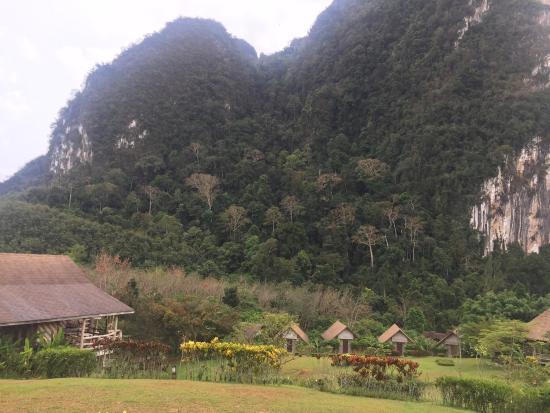 The Cliff & River Jungle Resort: photo1.jpg