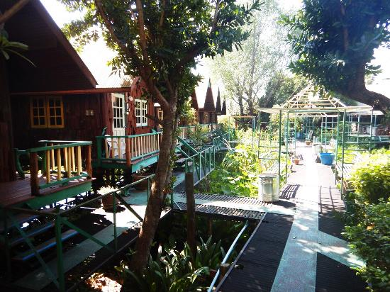 Sam's Jungle Resort Guest House : photo2.jpg