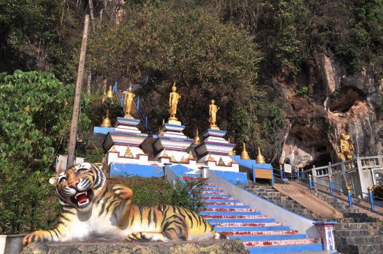 どぎゃーーーっと虎がいた...という - Picture of Tiger Cave Temple (Wat ...
