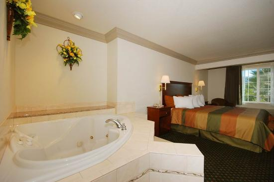Cloverdale, CA: King Spa Guest Room