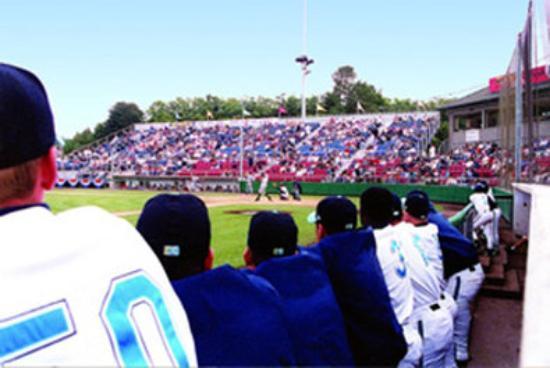 Everett, WA: Aqua Sox Stadium