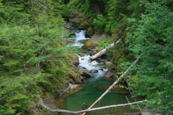 Chehalis, WA: Mt. Rainier