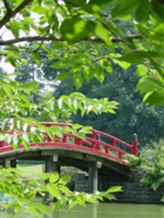 BEST WESTERN Galleria Inn & Suites: Memphis Botanical Garden