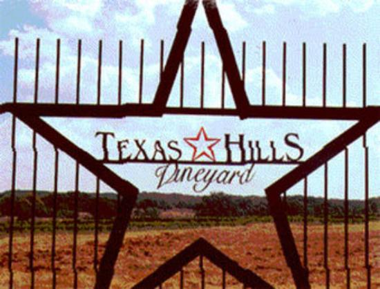 Johnson City, TX: Other