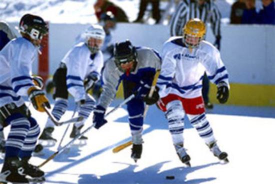 แอลเดอร์โกรฟ, แคนาดา: Hockey