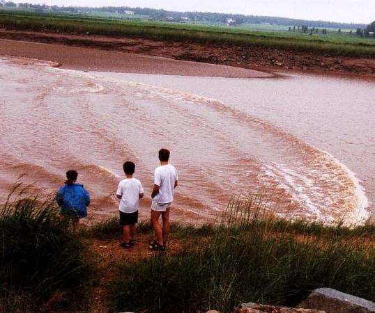 Best Western Truro - Glengarry: Site Tidal Bore