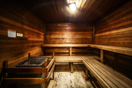 Holiday Inn Express Atlanta-Emory University Area: Relax in our soothing dry sauna