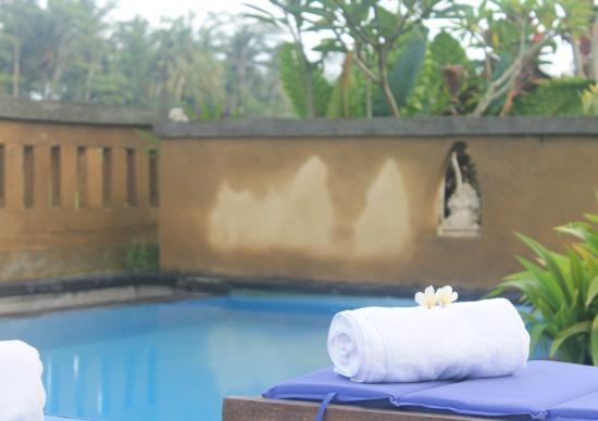 Ujung Ubud Guest House: Pool
