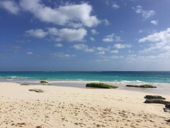 Elbow Beach, Bermuda-bild