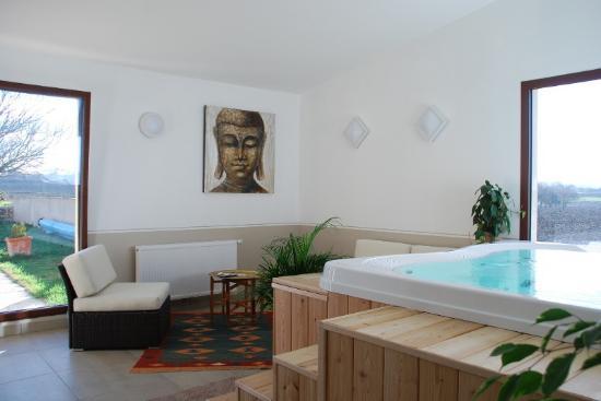 Allex, France: Le coin détente du Spa du Mokuso