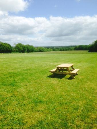 Hellingly, UK: Picnic bench