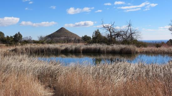 Hotels Near Guadalupe Mountains National Park