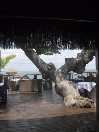 Dugong Beach Lodge Picture