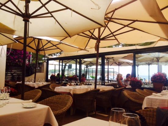 Vin Vosne Romanée Picture Of Restaurant Villa Mas Sant Feliu De Guixols Tripadvisor